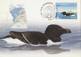 PORTUGAL 2008 Max Card With Bird.BARGAIN.!! - Oiseaux