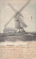 Nederbrakel - Le Moulin Du Top - 1903 - Nels Série 24 - 6 - Molen - Brakel