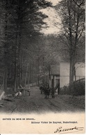 Nederbrakel - Entrée Du Bois De Brakel - De Ruyver- 1905 - Brakel
