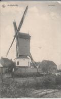 MIDDELKERKE DE MOLEN - Middelkerke
