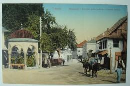 Travnik. - Dželaludin I Abdulah Paše Turbeta. - Pascha Gräber. - Ca 1910. - Bosnie-Herzegovine