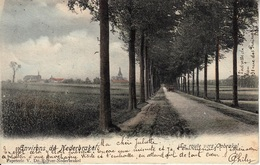 Nederbrakel - La Route Vers Opbrakel - 1905 - Kleur - Brakel