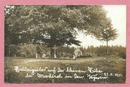 68 - MARKIRCH - STE MARIE Aux MINES - Carte Photo - Kleine Höhe - Petit Haut - Heldengräber - Guerre 14/18 - Sainte-Marie-aux-Mines