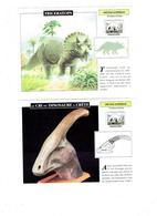 Lot 6 - Fiche Illustree - Dinosaure TRICERATOPS à Crête TYRANNOSAURUS REX Fossile COQUILLAGE TIBIA Euoplocephalus - Animaux