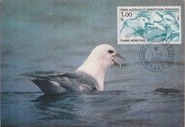 TAAF 1986 Max Card With Bird.BARGAIN.!! - Albatro & Uccelli Marini