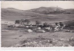 PS / Carte-Photo  9X14 . MILITARIA .ALGERIE .Camp D' AÏN TINN (Constantinois) - Algérie