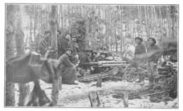 WW1 14-18 Chasseurs Alpins Pièce De 65 De Montagne En Batterie En Alsace 1915 - 1914-18