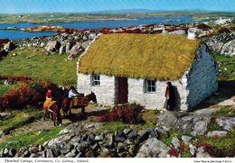 1 AK Irland Ireland * Thatched Cottage In Der Region Connemara - County Galway * - Galway