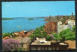 AUSTRALIA - SYDNEY  Harbour From Potts Point. Ed. JOHN SANDS - Sydney