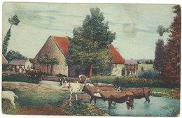 Troupeau De Vaches Devant Un Mas - Cachet Postal Octogonal  .  (111698) - Vaches