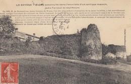 61 - La Goyère - Ferme Construite Dand L'enceinte D'un Antique Manoir - Jadis Flanqué De Sept Tours - Autres Communes