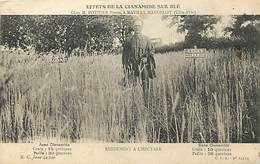 Dpts Div.-ref-AF963- Côte D Or - Mavilly Mandelot - Publicité Effet Cianamide Sur Blé De Mr Pothier Pierre - Agriculture - France