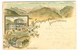 Gruss Aus SCHYNIGE PLATTE Farblitho HOTEL Gebr. Kaufmann Mit Poststempel 1896 - BE Berne