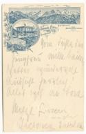 Gruss Aus SchYNIGE PLATTE Litho HOTEL Gebr. Kaufmann Mit Poststempel 1895 - BE Berne