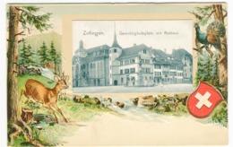 ZOFINGEN Farblitho Prägekarte Passepartout Gerechtichkeitsplatz Mit Rathaus Um 1907 - AG Aargau