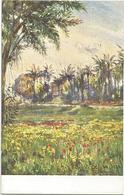 W1243 Libia - Tripoli - Oasi Di Sciarasciat - Giovanni Rava Dipinto Paint Peinture Illustrazione Illustration - Libia
