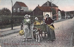 METIERS Agriculture ( Belgique ) LAITIERES ( Attelage : Voiture à Chien ) Jolie CPA Colorisée - - Paysans