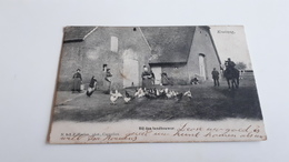 *KRUISWEG Bij Den Landbouwer Belle Animation  Oblitéré En 1903 - Andere