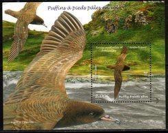 TAAF ,  FRENCH ANTARCTIC, 2019, MNH, BIRDS,  S/SHEET - Birds
