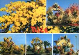 06 - Nice : Corso Fleuri - Multivues - Carnaval