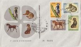 LUXEMBOURG 1961 FDC With Woodpecker + Other Animals LIMITED EDITION.BARGAIN.!! - Spechten En Klimvogels