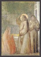 PG208/ GIOTTO, *San Francesco Fa La Prova Del Fuoco*, Firenze, Basilica Santa Croce, Cappella Bardi - Paintings
