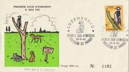 LUXEMBOURG 1961 FDC With Woodpecker LIMITED EDITION.BARGAIN.!! - Spechten En Klimvogels