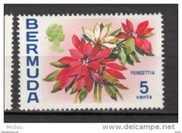 ##5, Bermuda, 1970, MH, Fleur, Flower, Poinsettia - Bermudes