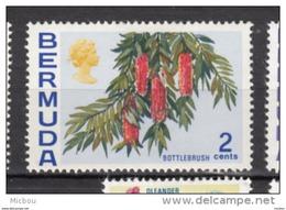 ##5, Bermuda, 1970, MH, Fleur, Flower, Bottlebrush - Bermudes