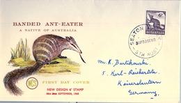 1960 , AUSTRALIA , SOBRE DE PRIMER DIA , SEATON , FAUNA , BANDED ANT - EATER - Sobre Primer Día (FDC)
