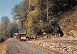 CPM - Grottes De HAN-SUR-LESSE - Arrivée Du Tram - Entrée De La Grotte - Rochefort