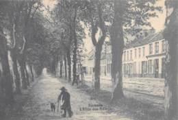 DIXMUDE - L'Allée Des Tilleuls - Diksmuide
