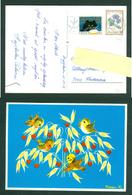 Denmark. Christmas Card 1973. Birds Eating Grain,Heart. Artist: Karen K. Postal Used,With Christmas Seal. - Christmas