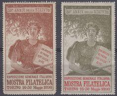"""ITALIA - 1898 - Lotto Di Due Erinnofili Nuovi MNH """"Mostra Filatelica Di Torino"""". - Italia"""