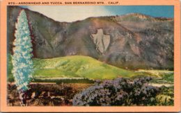 California San Bernardino Mountains Arrowhead And Yucca - San Bernardino
