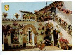 Piece Sur Le Theme De Espagne - Cordoba - Patio - Calle Montero 12 - Voyagee En 1998 - Espagne
