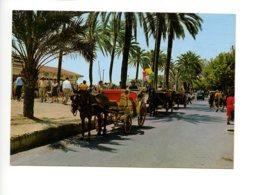 Piece Sur Le Theme De Espagne - Sitges - Barcelona - Paseo De La Ribera - Espagne