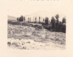 MINI PHOTO----ALGERIE---N' GAOUS---20 Mai 1936----voir 2 Scans - Africa