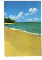 Piece Sur Le Theme De Maurice - Ile Maurice - Cette Perle De L Ocean Indien - Plage De Pomponnette - Voyagee - Maurice