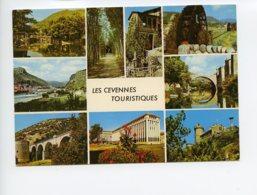 Piece Sur Le Theme De Multivues - En Promenade - Valleraugue - Mas Cevennol - Banbous Geants - 1973 - France