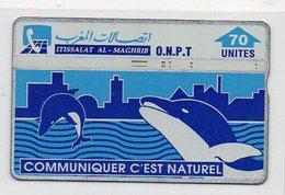 O.N.P.T. 70 UNITES - DOLPHINS - Marruecos