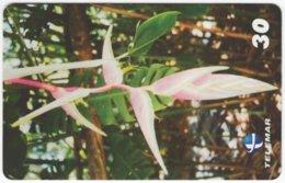 BRASIL H-090 Magnetic Telemar - Plant, Flower - Used - Brasilien