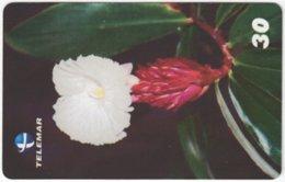 BRASIL H-091 Magnetic Telemar - Plant, Flower - Used - Brasilien