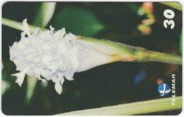 BRASIL H-094 Magnetic Telemar - Plant, Flower - Used - Brasilien