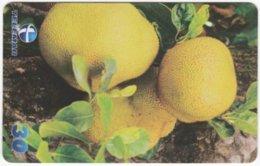 BRASIL H-102 Magnetic Telemar - Plant, Fruit, Jackfruit - Used - Brasilien