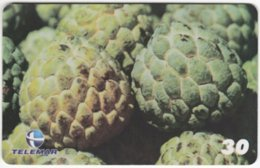 BRASIL H-106 Magnetic Telemar - Plant, Fruit, Sugar-apple - Used - Brasilien