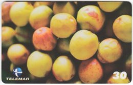 BRASIL H-108 Magnetic Telemar - Plant, Fruit, Mangaba - Used - Brasilien