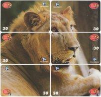 BRASIL H-131 Magnetic Telemar - Animal, Cat, Lion - 6 Pieces - Used - Brasilien