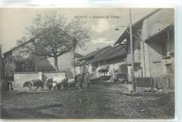 CPA 01 AIN Billiat Intérieur Du Village Troupeau Vaches Non Circulée - France