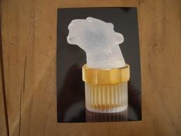 Carte Lalique Pour Homme* - Perfume Cards